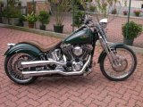 GREEN_SOFTAIL_001