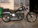 SOFTAIL_CUSTOM_001