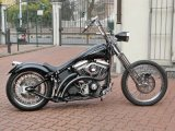 SOFTAIL_MODIFICATO_001