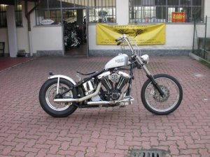 SOFTAIL_OLD_001